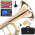 MENDINI Bb TRUMPET ROSE BRASS DOUBLE-BRACED MONEL PISTON -MTT-30GB