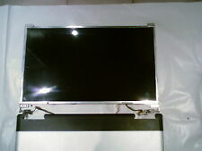 """DISPLAY SCHERMO PANNELLO LCD 15"""" AU  OPTRINICS B150PG01 DELL ACER HP ASUS CDC"""