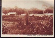1930  --  GUYANE  ST LAURENT DU MARONI  EXPLOITAT° AGRI