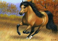 Buckskin horse autumn fall golden field landscape limited edition aceo print art