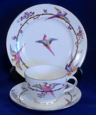 Antique Foley China (E.Brain & Co.) Trio of Cup - Saucer & Side Plate - c1913