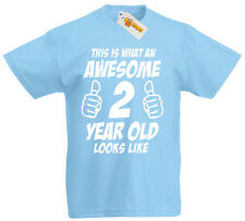 This Is Awesome 2 Year Old, 2nd Birthday Gift ideas T-Shirt For 2 Year Old Boys