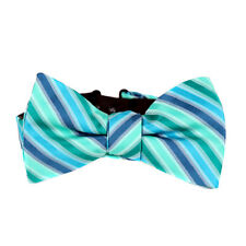 Green Blue Men's Unique Striped Pre-Tied Bow Tie Formal Wedding Prom