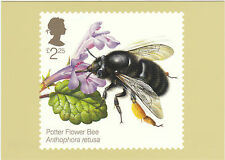 POST OFFICE POSTCARD  -  BEES  -  POTTER  FLOWER  BEE  -  2015