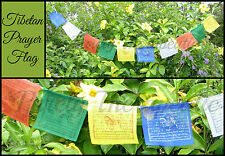 ~STRING OF 10 TIBETAN BUDDHIST PRAYER FLAGS~Buddha~1.5 Metres Long~Prosperity~
