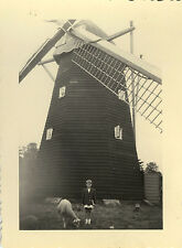 PHOTO ANCIENNE - VINTAGE SNAPSHOT - MOULIN À VENT MOUTON -WINDMILL SHEEP BOKRIJK
