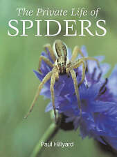 Private Life of Spiders by Paul Hillyard (Hardback, 2007)