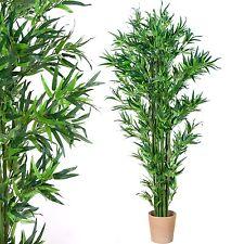 Plant de Bambou, Tronc véritable Arbre artificiel, artificielles - 190 cm