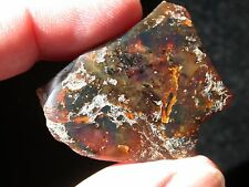Burmite AMBER Gemstone 99 Million Years Old LARGE 7.9 g ROOT Amber RARE
