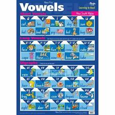 Learning Short & Long Vowels Sound and Digraphs Read Phonetically NSW Wall Chart