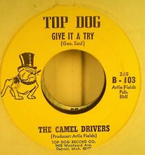 THE CAMEL DRIVERS - GIVE IT A TRY - SUNDAY MORNING 6 O'' CLOCK - DETRIOT GARAGE