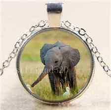Cute Elephant Photo Cabochon Glass Tibet Silver Chain Pendant Necklace