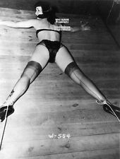 BETTIE PAGE Photo BUSTY Hot Legs Girl Stripper RARE Burlesque STOCKINGS sexy o