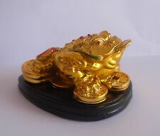 FENG SHUI THREE LEGGED TOAD FROG WITH A COIN FOR WEALTH PROSPERITY GIFT ITEM