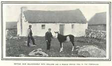1900 Cottage Near Ballyconneely With Boulders And Piebald Orphan Foal