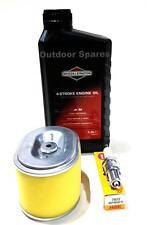 Qualità Honda GX140, GX160 & GX200 Kit di servizio, BRIGGS & STRATTON Olio, NGK PLUG