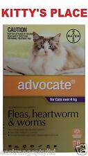 Advocate Flea and Worm Treatment For Large Cats Over 4kg 6 pack