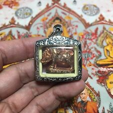 Beautiful Mini Pig Holy Yant Lp Paew Thai Talisman Luck Rich Wealth Protect