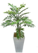 Artificial 2.5ft Phoenix Bamboo Palm Plant ~ House Plant ~ Super Quality