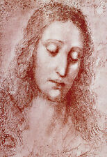 Head of a Young Woman 1510 Leonardo da Vinci  Poster Print