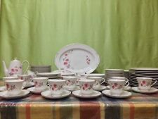 Tiger China ware Set 91 pcs