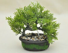 Bonsai Tree in Oval Pot, Artificial Plant Decoration for Office and Home 20 cm
