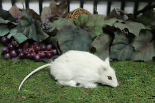 White Rat Mice Mouse Furry Animal Decoration Horror Halloween Taxidermy Like