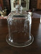 "Glass Display Bell Jar Dome Garden Cheese 5 1/2"" tall 4"" wide"