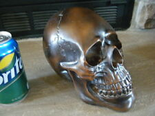 BRONZED WOOD LOOK SOLID BROWN RESIN HUMAN SKULL CADAVER PROP SCARS SCARY TEETH