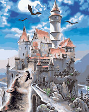 Framed Paint by Numbers kit Painting by Numbers Great Black Castle Wolf YZ7088