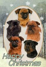 Brussels Griffon Dog A6 Christmas Card Design XGRIFFON-15 by paws2print