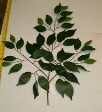 12 NEW GREEN FICUS  LEAF BRANCHES W/42 LEAFS, WHOLESALE SILK FLOWERS
