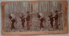 M.H. Zahner 1903 Successful DEER HUNTERS