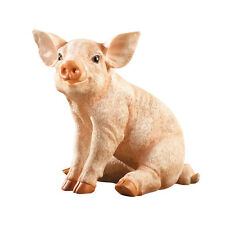 Baby Pig Garden Statue, by Collections Etc