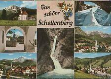 Alte Postkarte - Das schöne Schellenberg