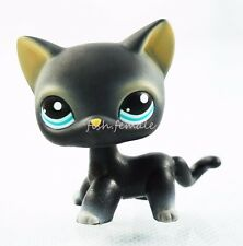 iHasbro Littlest Pet Shop LPS Black Short Hair Kitty Cat Blue Eyes Toys New #994