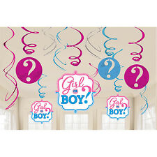 'Girl or Boy?' Baby Shower Gender Reveal Party, Hanging Foil Swirl Decorations