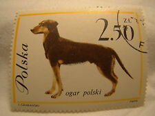 Poland Stamp 1963 Scott 1121 A397  Dog 2.50 Zt