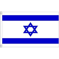 Israel Large Flag 8Ft X 5Ft Star Of David Israeli Banner With 2 Eyelets