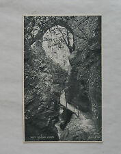 c1920 B/W Postcard. Lydford Gorge, Devon. Path over Torrent of the River Lyd