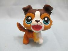 Littlest Pet Shop Collie Dog Puppy #237 Open Mouth Brown Tan White LPS Authentic