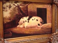 Country French Framed Oil Painting Of Spotted Pig