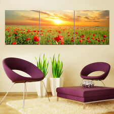 Large Framed HD Canvas Wall Art Canvas Prints Poster Poppy Flower Decor XmasGift