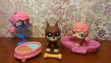 Littlest Pet Shop Lot #1519 Brown Great Dane Dog and #1520 Pink Poodle Wig
