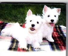 Westie List Pads ...Adorable ! 2 puppies ...2  pads .. 100 sheets