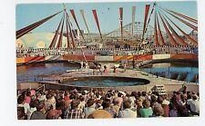 Sea Circus at Pacific Ocean Park SANTA MONICA Vintage Los Angeles Amusement 1962