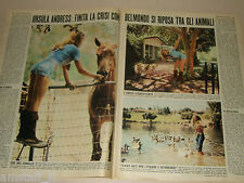 URSULA ANDRESS attrice actress clipping articolo foto photo 1972