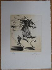 Jean-Marie GUINY : Dressage du cheval # GRAVURE ORIGINALE SIGNEE et N° #