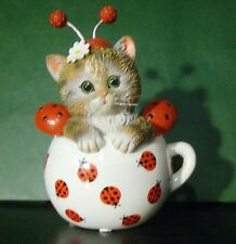 Cute as a Bug Kitten Ladybug Kitty-Cat in a Tea Cup Bradford Cups of Affection