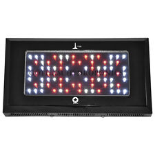 240w HO Lighthouse BlackStar LED Grow Light 3W Veg/Clone LED's Hydro L011